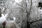 封开麒麟山 现冰挂美景