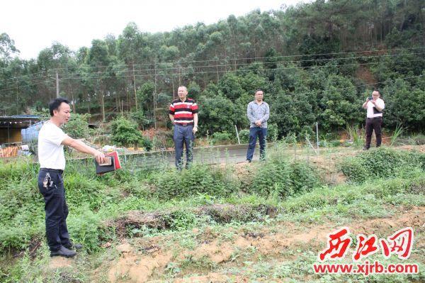 村党支部书记向河台镇委书记、委员介绍菊花种植情况。