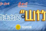 """直播:超强台风""""山竹""""袭击肇庆"""