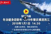 """冬泳健身迎新年""""体育彩票杯""""2019年肇庆横渡西江"""