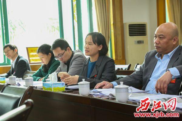 政协委员积极献言献策,为我市发展提出了大量建设性建议。西江日报记者 梁小明 摄