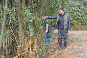 高要区小湘镇桔财村党支部书记、主任钟锦坤 全心全意服务村民是军人的担当