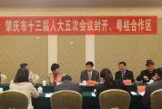 市十三届人大五次会议进行分组讨论 封开、粤桂代表团为肇庆发展出谋献策