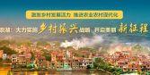 鼎湖:大力实施乡村振兴战略 开启美丽新征程