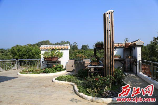 民宿楼顶花园一角。 西江日报记者 杨丽娟 摄
