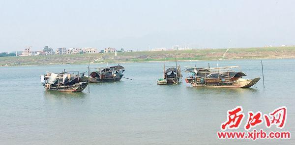砚州岛景色。 西江日报记者 赖小琴 摄