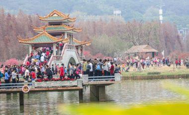 春节黄金周我市接待游客近四百万人次