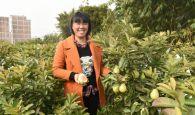 外出务工女青年回怀集创业 种植番石榴新品种开拓新市场