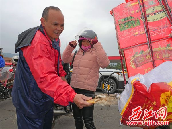�后不少旅客��上�u、��、番薯等家�l物品返程 后�湎淅镅b�M暖暖家味道