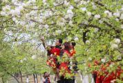 春节假期结束 肇庆景区热度不减