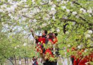 春节假期结束 APP自助领取彩金38景区热度不减
