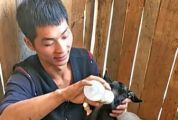 怀集县下帅乡退伍军人韦操生 发展种养业带领村民致富