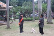 端州城东公园学雷锋志愿者陈卫华 真诚面对市民 耐心做好服务