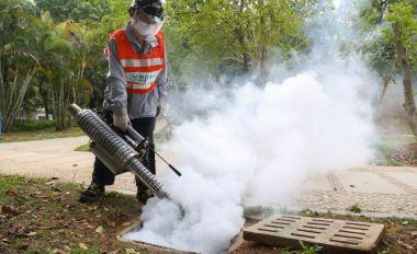 端州开展爱国卫生大扫除