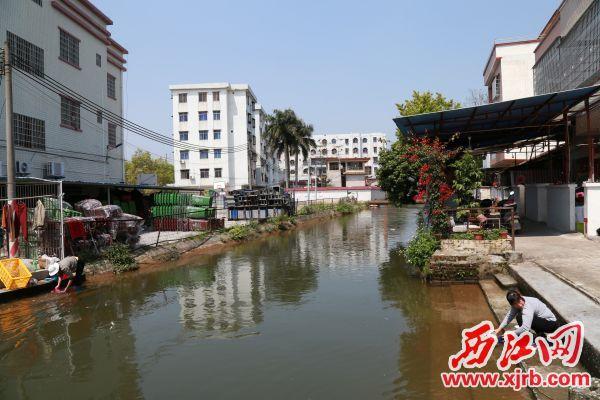 小河水流清澈村民在河边洗菜。 西江日报记者 杨丽娟 摄