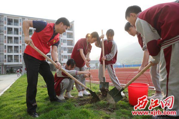 学生们和志愿者们一起在校园里培土植绿。 西江日报记者 刘春林 摄