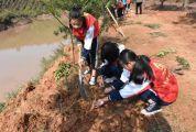 怀集县开展全民义务植树活动