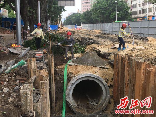 市二醫院門口排水管改造工程正緊張進行中。 西江日報記者 賴小琴 攝
