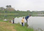 游客星湖邊撈魚
