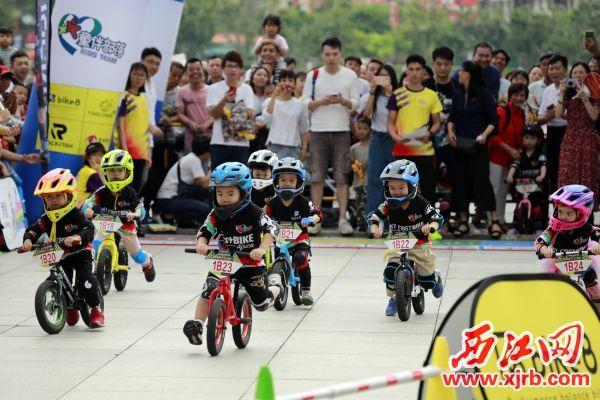 儿童平衡车大赛吸引了众多观众争相 观赏。 西江日报记者 刘春林 摄