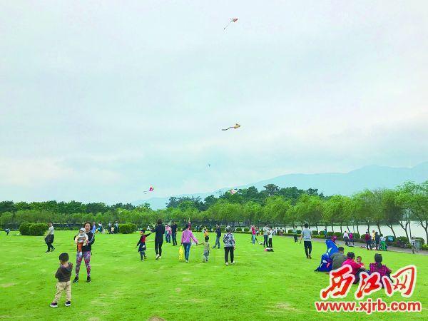 """""""五一""""假期,不少市民选择到城区绿地公园游玩。图为端州城区的""""风筝岛""""。 西江日报记者 谢江涛 摄"""