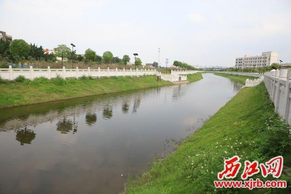 经过治理后的肇庆高新区独水河变成了集排涝、休闲、观赏于一体的水景渠。西江日报记者 刘春林 摄