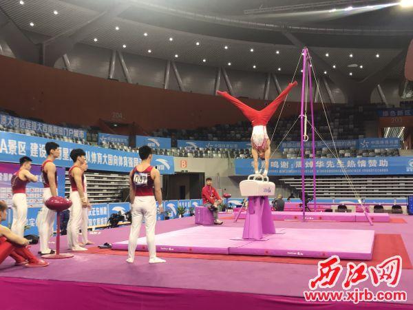 各地选手进行赛前训练。 西江日报记者 刘浩辉 摄
