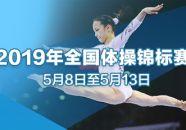 全国体操锦标赛