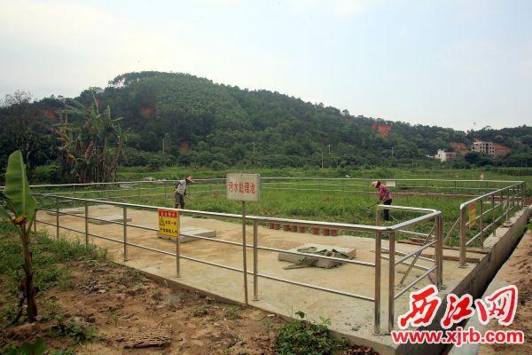 """新圩镇丽岸村建起的污水处理设施是村民主动""""让地""""两百多平米后才顺利建成的。 西江日报实习生 曹笑 摄"""