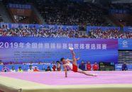 全国体操锦标赛决出5枚单项金牌