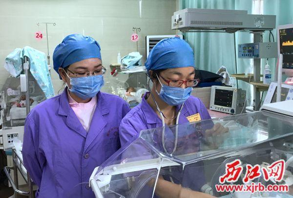 谢瑞红(右)和欧锦焕在新生儿科重症监护室工作。西江日报记者 夏紫怡 摄