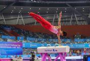 2019年国际体联体操世界杯挑战赛今日启幕