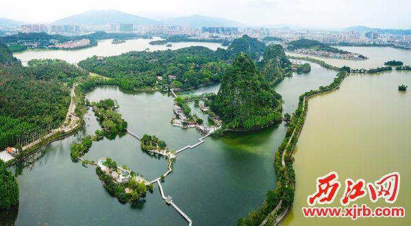 经过修复后的里湖呈现翠绿色,与未经整治的外湖形成鲜明对比。 西江日报记者 梁小明 摄