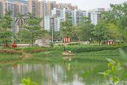 东湖公园有人偷钓 不文明行为煞风景