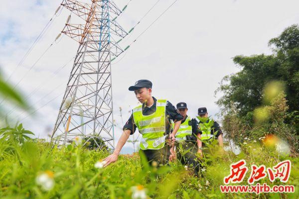 我市电网警务室巡警对城区易 盗线路黑点进行重点排查。 西江日报记者 刘亮 摄
