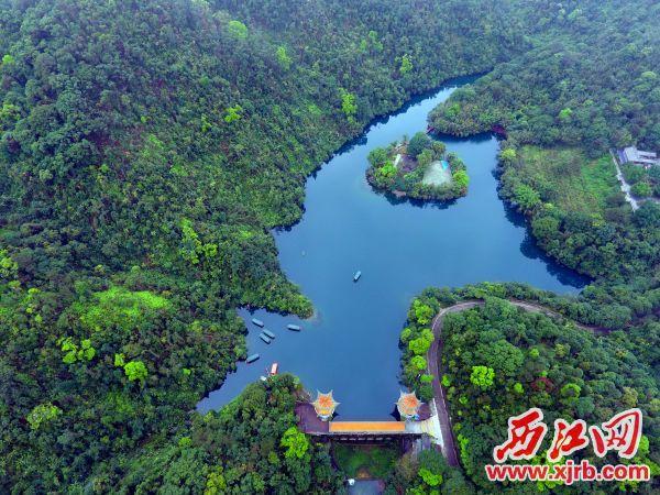 漂亮的鼎湖山景区。 西江日报记者 刘春林 摄