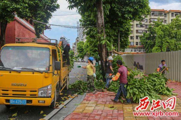 6月23日下午,端州城 区雷雨大风导致多处树木折 断。城中路有树枝被吹断,宝月 路宝月荷塘旁有大树被连根拔 起。市政园林相关人员迅速到场 清理,恢复了道路畅通。  西江日报记者 曹笑 摄影报道