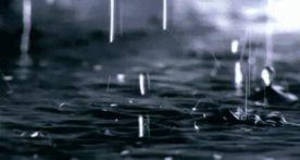 暴雨向肇慶襲來!?各縣(市、區)迅速響應部署防汛救災工作