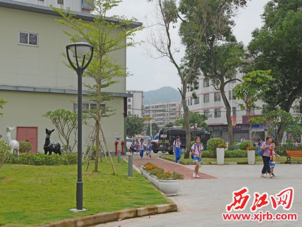 昔日菜地今變成靚麗公園。 西江日報記者 吳威豪 攝