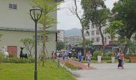 高要已完成10個街頭小景建設
