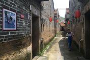 """四会迳口镇大利村让历史文化焕发生机 这里的新农村建设""""静悄悄"""""""