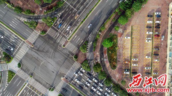 星湖大道与信安路交汇处,达到了观赏性和功能性的提升。 西江日报记者 曹笑 摄