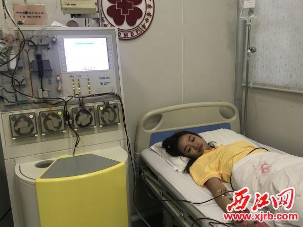 杨绮淇正在进行造血干细胞采集。 西江日报记者 潘粤华 摄