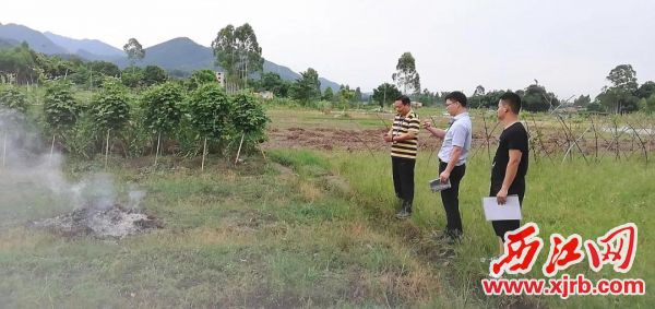 巡查组成员在鼎湖区布基村田基发现一露天焚烧现场,现场责令当事人扑灭火点以及对当事人进行禁焚宣传教育。