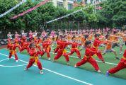 我市开展传统体育(武术)进校园活动