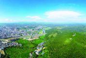 肇庆:乘湾区建设东风 建现代农业高地