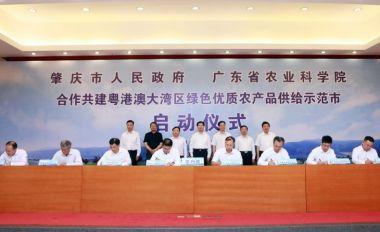市政府与省农科院签署共建肇庆分院框架协议