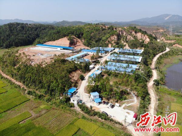 封开杏花鸡产业园一景。