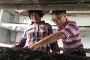市妇联驻村干部刘晓林 满腔热忱为扶贫 日行万步暖民心