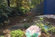 """这里有一条""""三不管""""路段 位于端州臻汇园和幸福湖畔小区之间,杂草丛生垃圾遍地"""